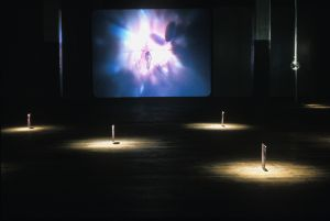 Installation view - Following Suit Video, 2002